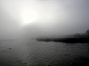 sac_fog2