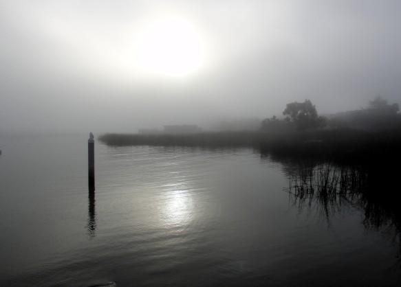 sac_fog3.JPG