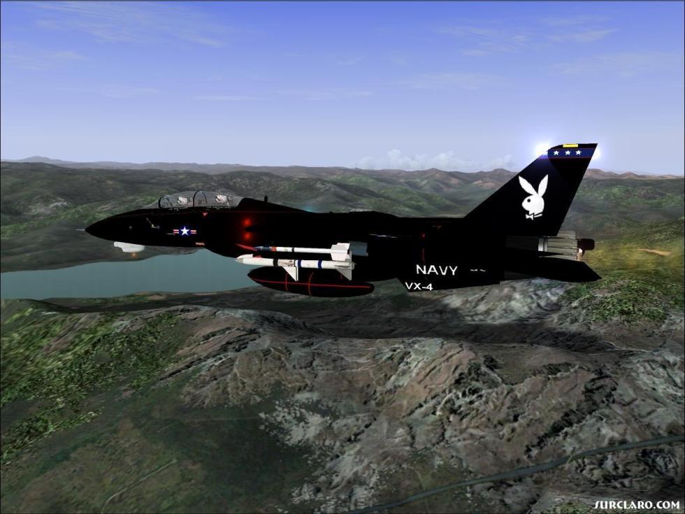 surclaro-F-14B_VX-4_Black_Bunny.jpg