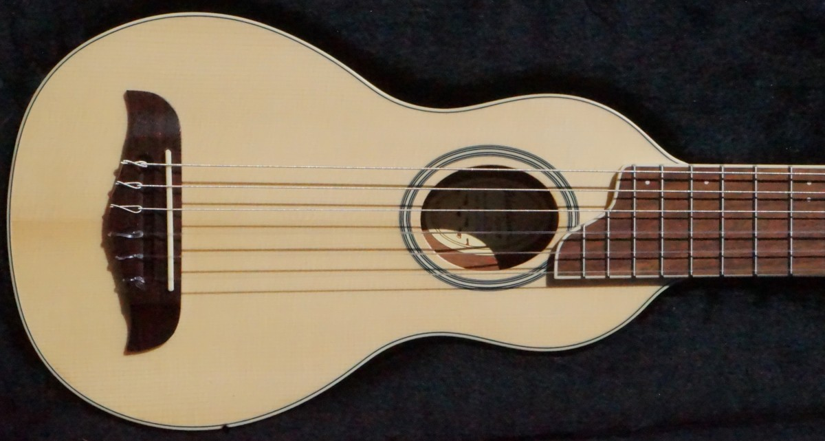 washburn rover travel guitar my new ax. Black Bedroom Furniture Sets. Home Design Ideas