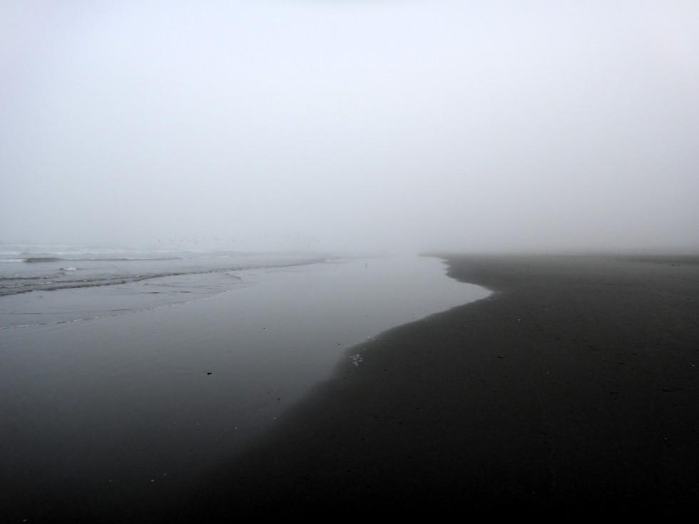 hum_fin_sand