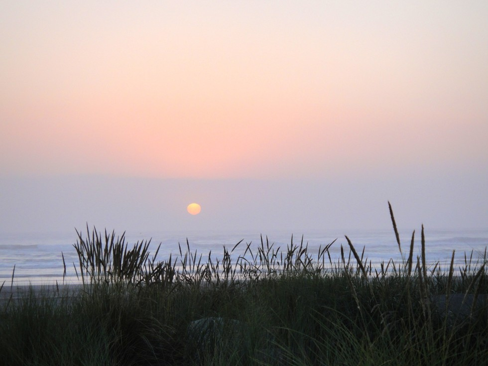 hum_fin_sunset