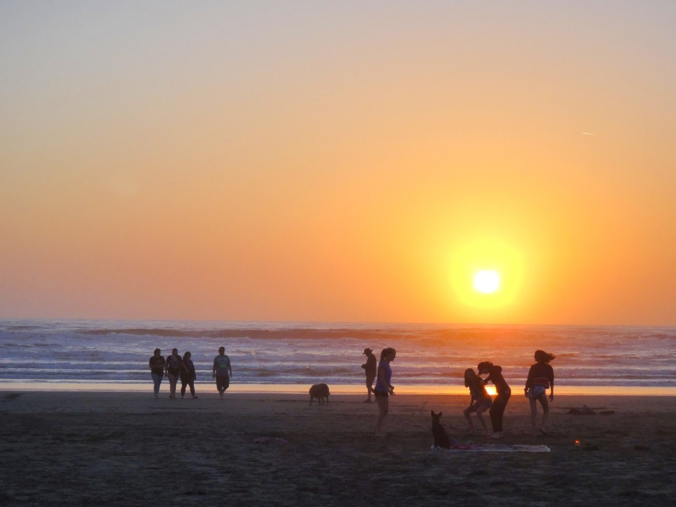 hum_fin_sunset2