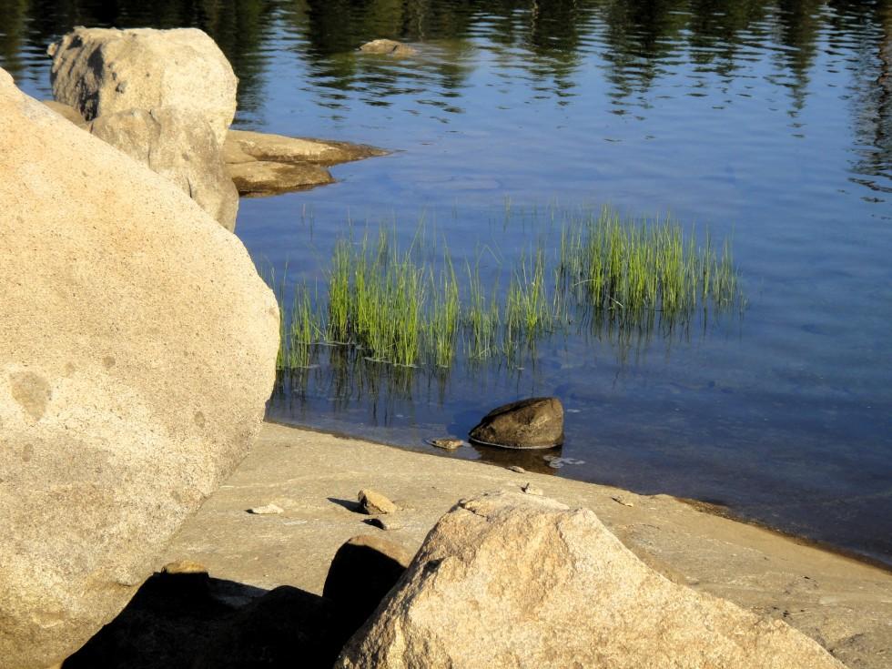 loon_lake_8-17_gras-rocks