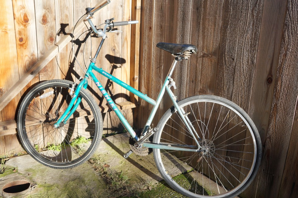 nis-frank-bike_