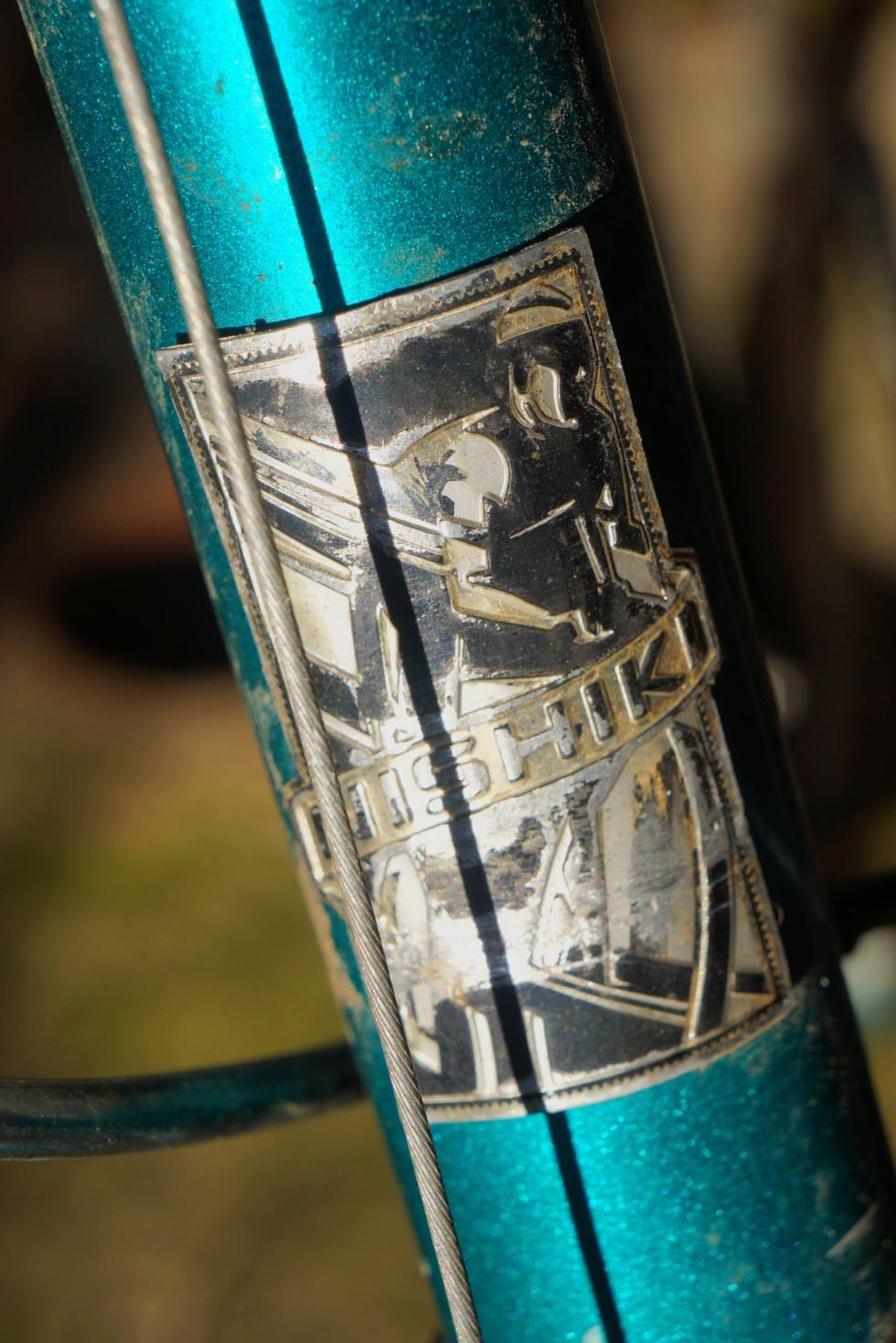 nis-frank-bike_hdbdg